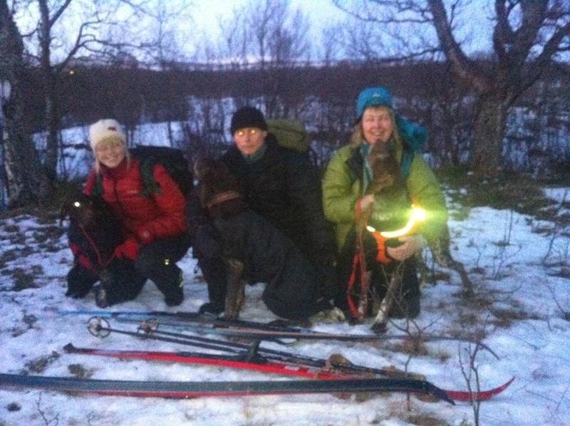 Nr 2. 42p, Korthårvorstehlaget: Ingebjørg og Tilde, Bård og Bertil, Anne-Maj og Inka