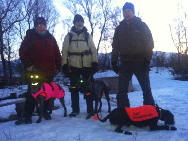 Nr 3. 36p, Strihårvorstehlaget: Magnhild og Tundra, Torgeir og Maile, Rune og Sway
